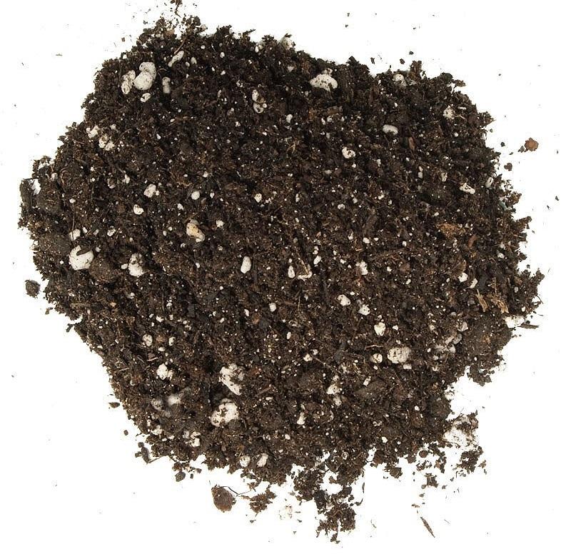 تصویر از خاک و کود آماده کاشت گیلدا
